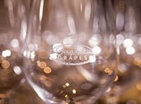 Wine Odyssey Gala Glasses
