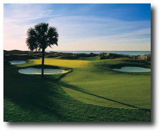 Turtle Point Golf Course 14th Hole